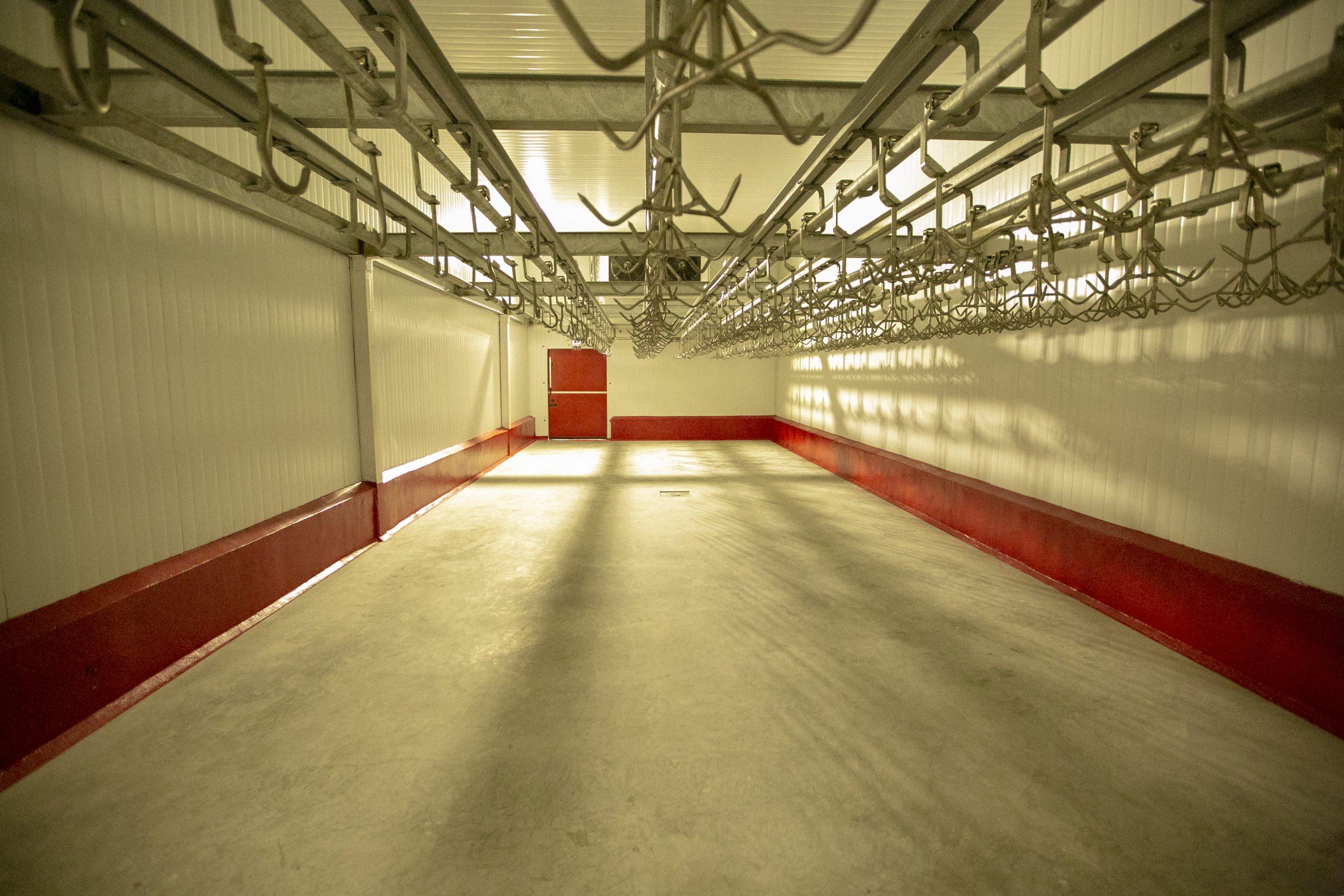 سالن تولیدی گوشت قرمز
